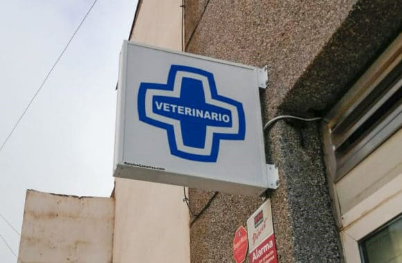 Banderola Cruz Clínica Veterinaria