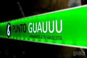 Letreros Luminosos en Canarias