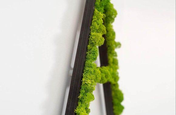 letra de musgo natural